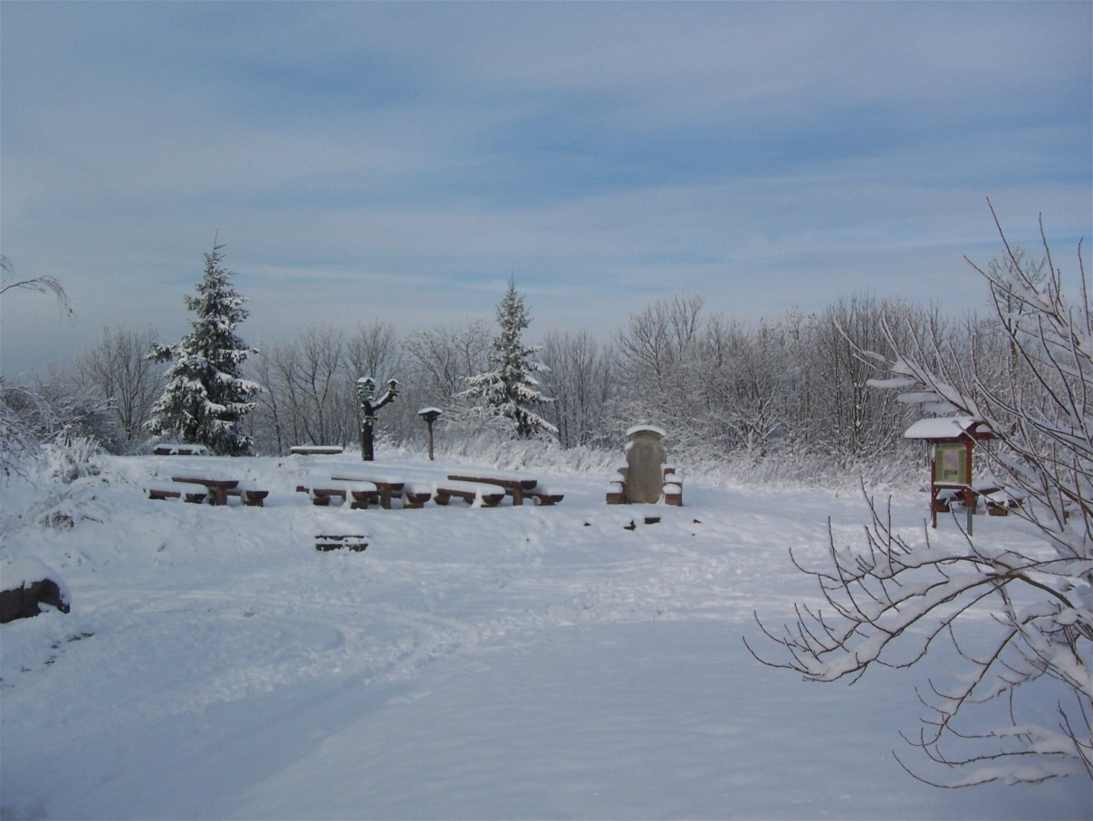 Pless winter 2012a